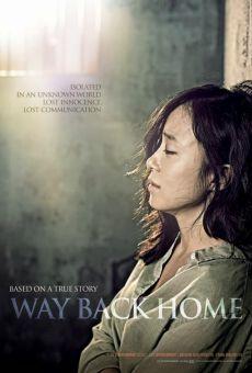 Ver película Way Back Home