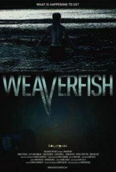 Weaverfish gratis