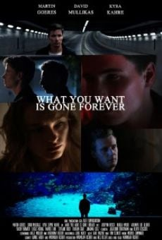 Película: What You Want Is Gone Forever