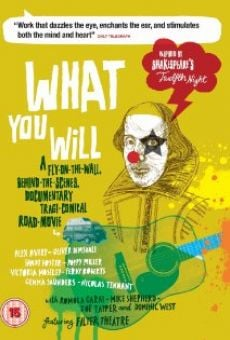 Ver película What You Will
