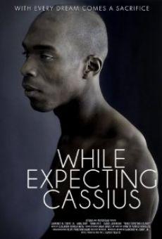 While Expecting Cassius