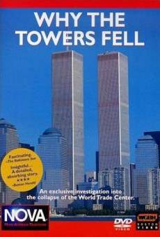 Ver película Why the Towers Fell