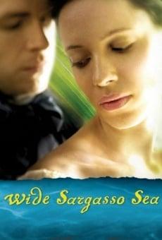 Ver película Wide Sargasso Sea