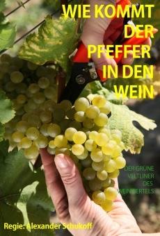 Ver película Wie kommt der Pfeffer in den Wein?