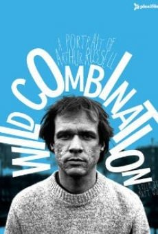 Ver película Wild Combination: A Portrait of Arthur Russell