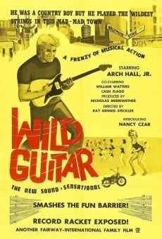 Wild Guitar online streaming