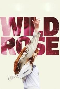 Ver película Wild Rose