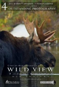 Película: Wild View: A Journey to a Wondrous World