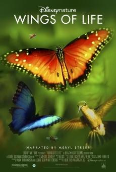 Wings of Life en ligne gratuit