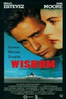 Ver película Wisdom, el delincuente