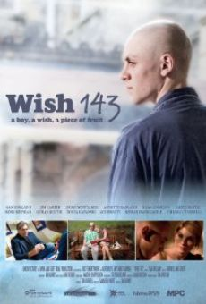 Ver película Wish 143