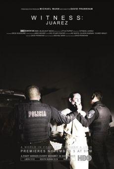 Ver película Witness