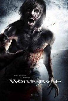 Ver película Wolvesbayne