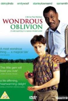Ver película Wondrous Oblivion
