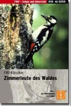 Ver película Woodpecker