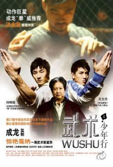Wushu: The Young Generation online streaming