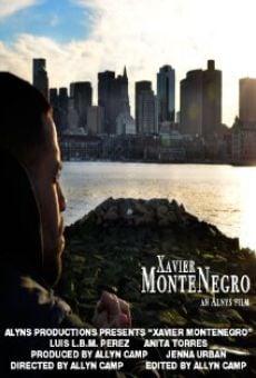 Watch Xavier MonteNegro online stream