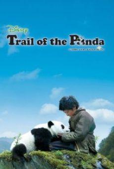 Película: Xiong mao hui jia lu