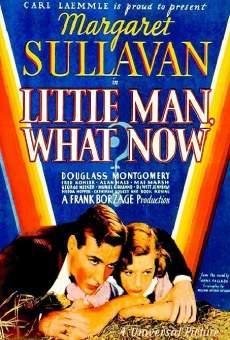 Ver película ¿Y ahora, qué?