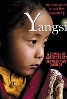 Yangsi on-line gratuito