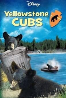 Ver película Yellowstone Cubs