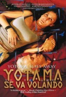 Yotama se va volando online