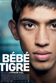 Ver película Young Tiger