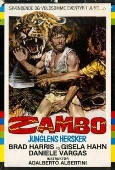 Película: Zambo, rey de la jungla