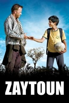 Ver película Zaytoun