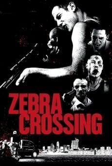Ver película Zebra Crossing