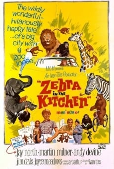 Ver película Zebra in the Kitchen
