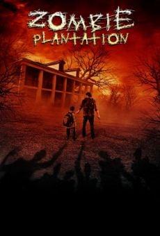 Ver película Zombie Plantation