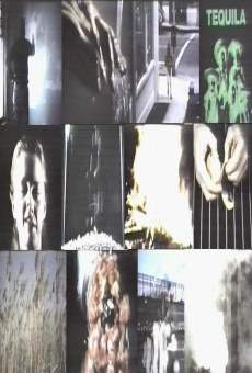 Película: Zorn's Lemma
