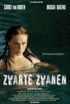 Ver película Zwarte Zwanen