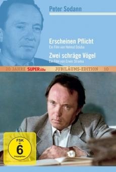 Ver película Zwei schräge Vögel
