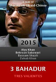 Ver película 3 Bahadur