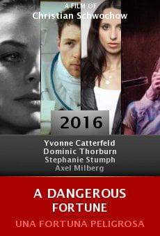 Ver película A Dangerous Fortune