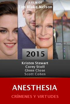 Ver película Anesthesia