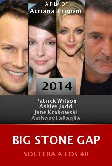 Ver película Big Stone Gap