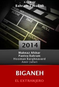 Watch Biganeh online stream
