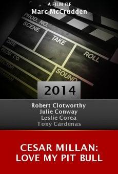 Ver película Cesar Millan: Love My Pit Bull