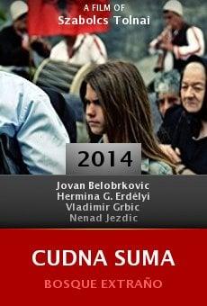 Watch Cudna suma online stream