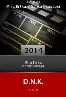 Watch D.N.K. online stream