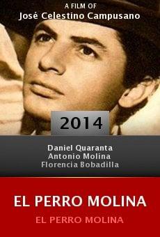 Watch El Perro Molina online stream
