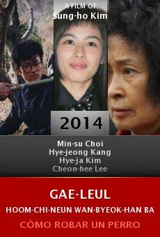 Ver película Gae-leul Hoom-chi-neun Wan-byeok-han Bang-beob