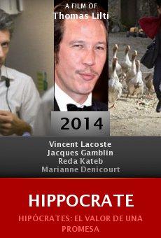 Ver película Hippocrate