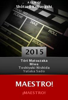 Ver película Maestro!