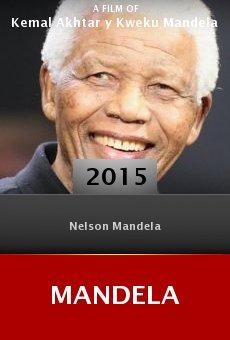 Ver película Mandela