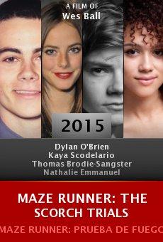 Ver película Maze Runner: Prueba de Fuego
