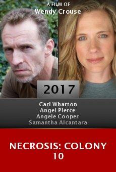 Ver película Necrosis: Colony 10
